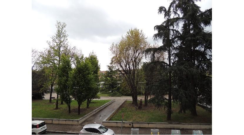 toscanini3006.jpg